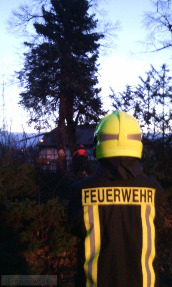 Hilfeleistung vom 11.03.2019  |  (C) Feuerwehr (2019)