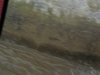 Hochwasser August 2010 Bild 72
