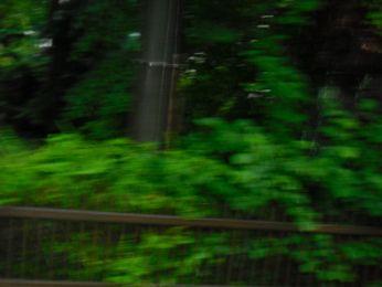Hochwasser August 2010 Bild 96